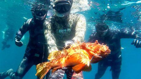 tecaj-podvodnega-lova-3