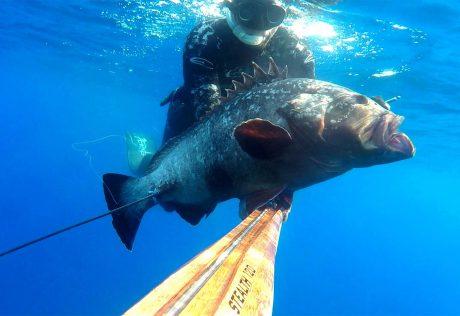 tecaj-podvodnega-lova-teorija-3