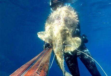 tecaj-podvodnega-lova-teorija-5