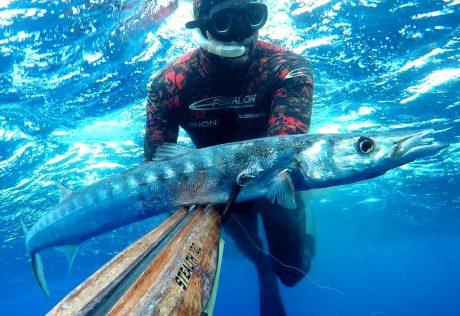 tecaj-podvodnega-lova-teorija-6
