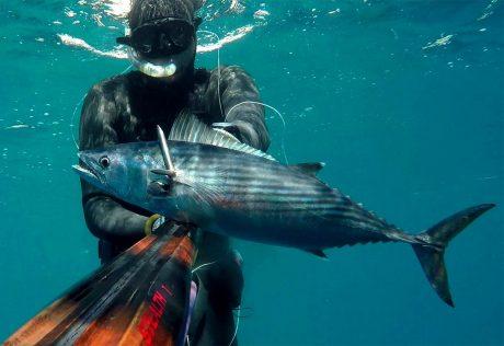 tecaj-podvodnega-lova-teorija-7