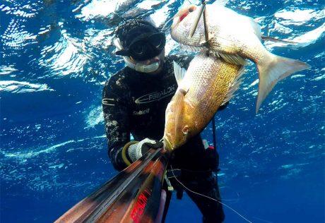 tecaj-podvodnega-lova-teorija-9
