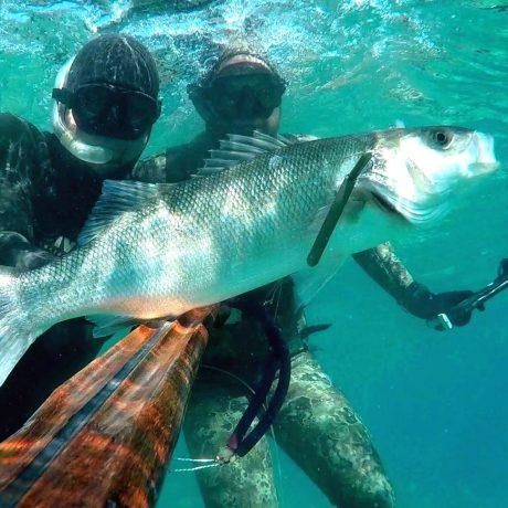 Tečaj podvodnega lova praksa